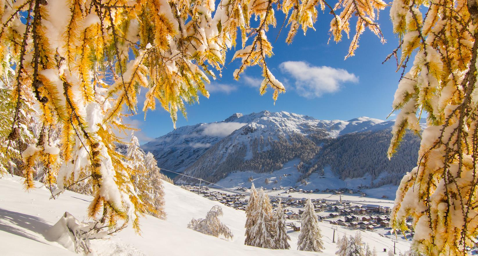 livigno b and b livigno winter inverno greenrose vicino alle piste2